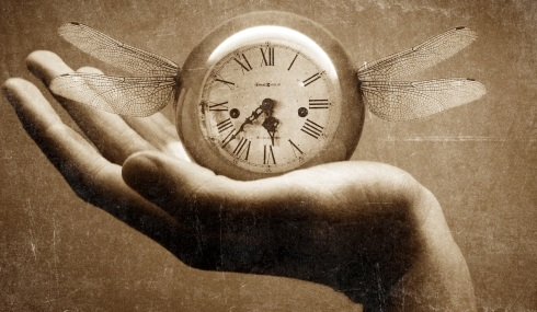 A vida e o Tempo